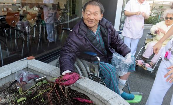 秋野菜の収穫をしました。